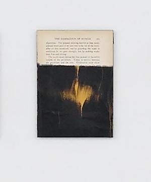 DarkWater Tim Rollins, Detail