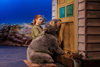 Diary of a Wombat Photo by Robert Catto